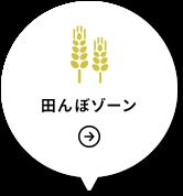 田んぼゾーン